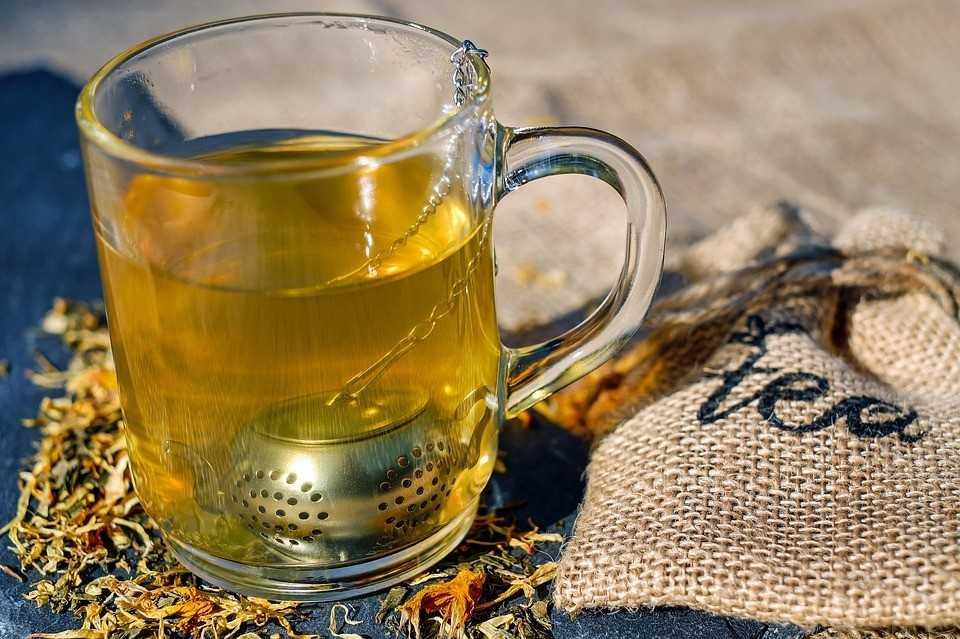 zelišča za čaj